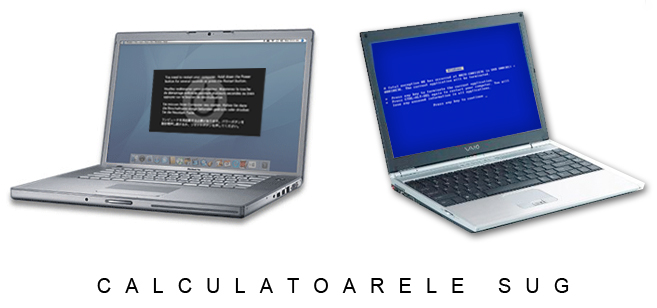 CalculatoareleSug
