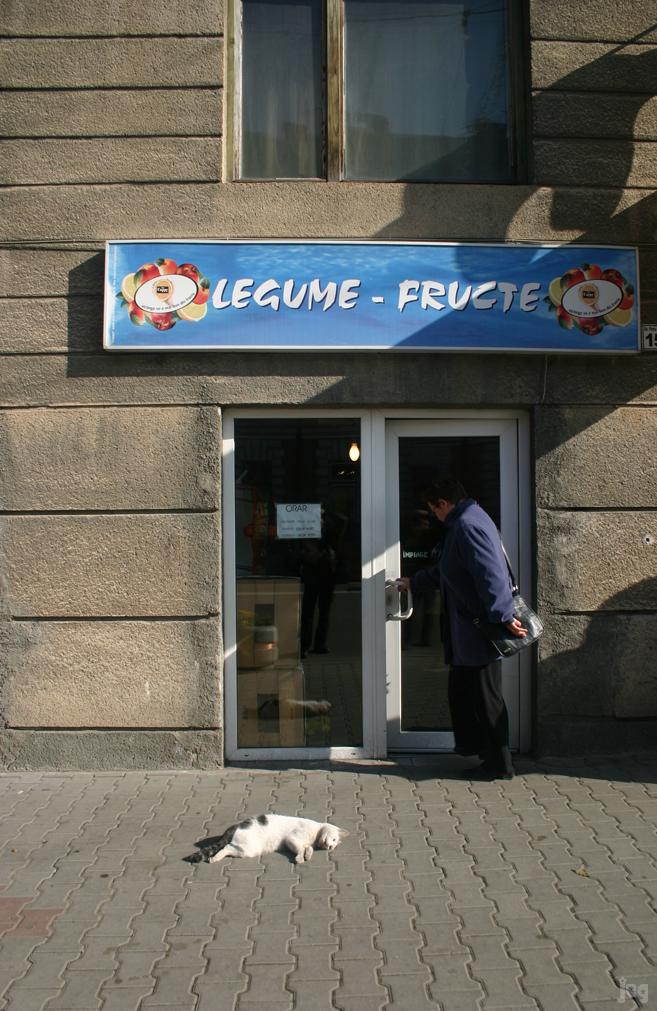 LegumeFructeMatza