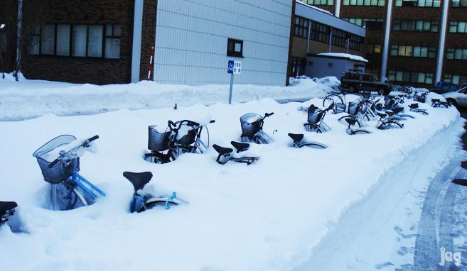 BicicleteleTocilarilor